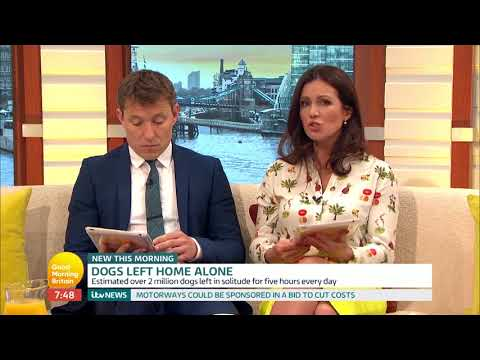 GMB Viewers React to Warning Against Leaving Dogs Alone | Good Morning Britain