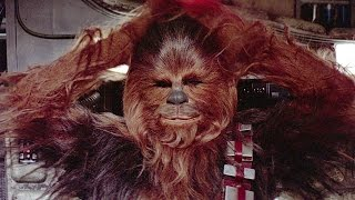 7 Things You May Not Know About Chewbacca