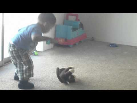 Baby Spanking his monkey!!!