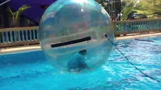 crazy me inside the water balloon..:p