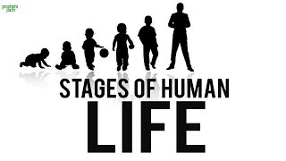 THE STAGES OF HUMAN LIFE (Very Deep)