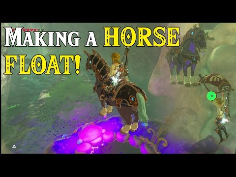 Getting a HORSE to FLOAT! Pegasus Horse in Zelda Breath of the Wild DLC