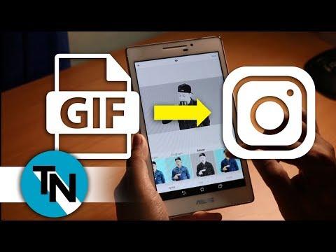 Cara Posting/Upload File GIF Lucu di Instagram - TipsNiwbi