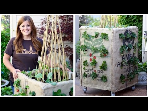 DIY Grow Box (Vertical Gardening)