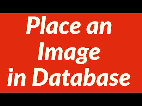 Place an Image in Database Worksheet Automatically