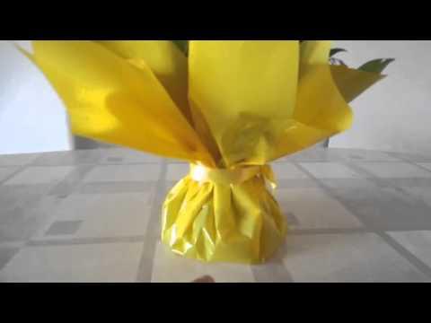 Bouquet in (bag) vase of water