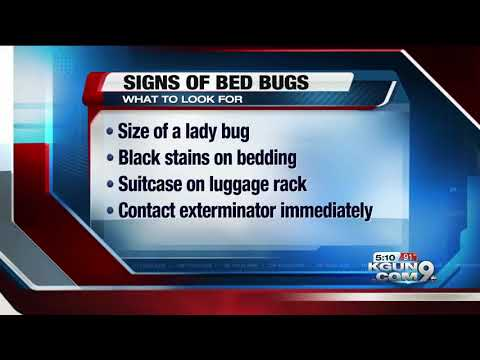 Woman says she was bitten by bed bugs at Phoenix movie theater