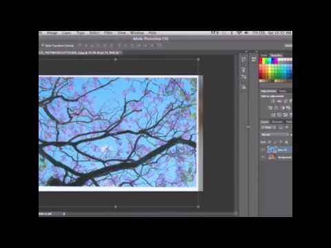 Graphic Design 2014 QUT Assessment 2