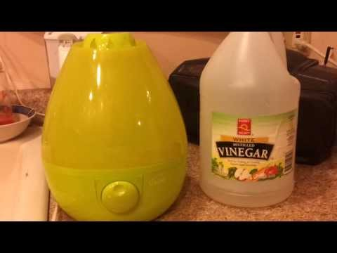 How To: Clean a Humidifier