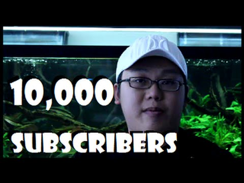10,000 Subscribers - Big Thank You