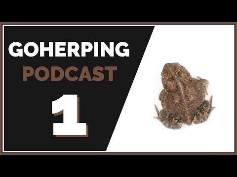 My Thoughts on Having a YouTube Channel | GoHerping Podcast #1