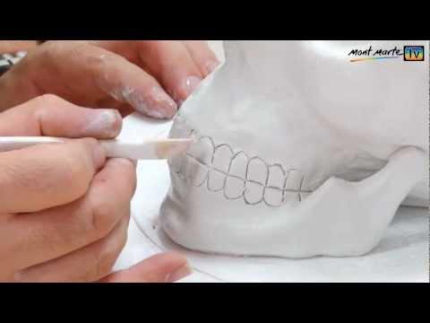 Art Lesson: How to make a simple Skull using Air Hardening Modelling Clay