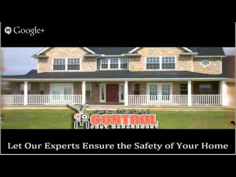 Orlando how to get rid of ants  Toll-Free 888-961-PEST Orlando how to get rid of ants