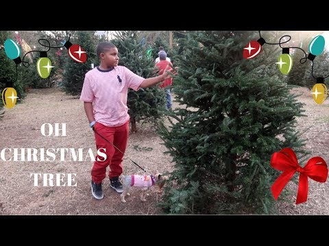 AMARI GOES TO A CHRISTMAS TREE FARM FOR THE FIRST TIME