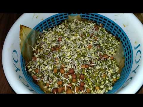 How to make sprouts at Home without sprout maker - ankurit dal - sprout lentils, diet food, healthy