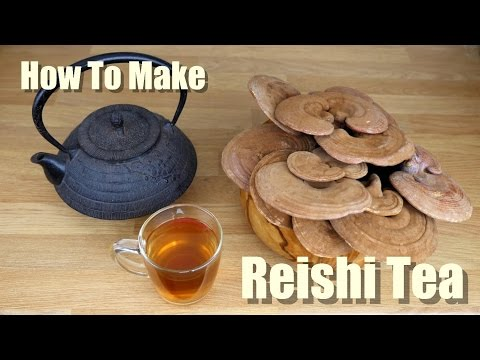 HOW TO MAKE REISHI MUSHROOM TEA - THE PROPER WAY