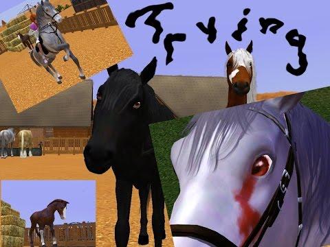 Wild Horses - Part 13
