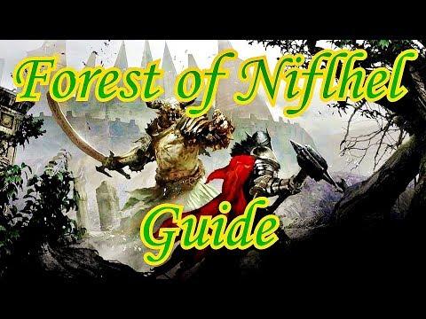 Guild Wars 2 - Forest of Niflhel Guide