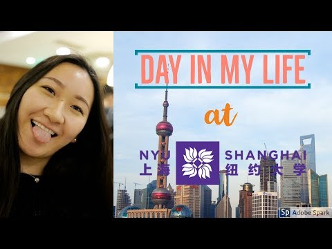 A Day in the Life at NYU Shanghai | Shanghai Vlog - Amy Dong