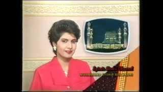 Intisari Rancangan TV3 (1991)