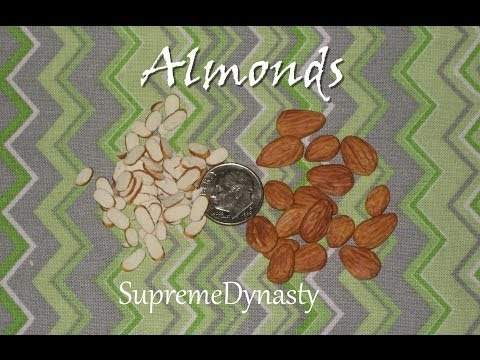 Almond Halves Nuts Slices - Polymer Clay Demonstration