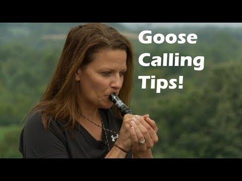 Goose Calling Tip for the Beginner