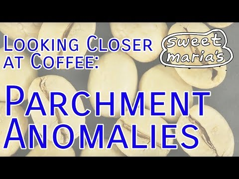 Looking Closer at Coffee: Parchment / Anomalies
