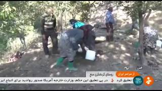 Iran Sanj village, Alborz province, Nature & People طبيعت و مردم روستاي سنج استان البرز ايران