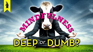 MINDFULNESS: Is It Deep or Dumb? – Wisecrack Edition