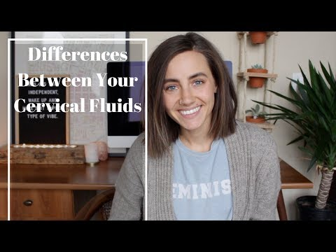 Differences Between Cervical Fluids