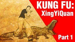 Kung Fu : What is XingYiQuan? | ART OF ONE DOJO