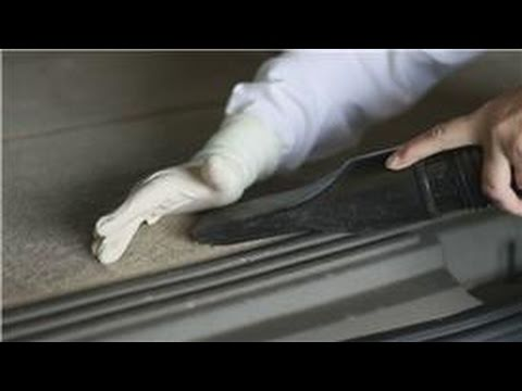Auto Detail : Removing Dog Hair From Carpet