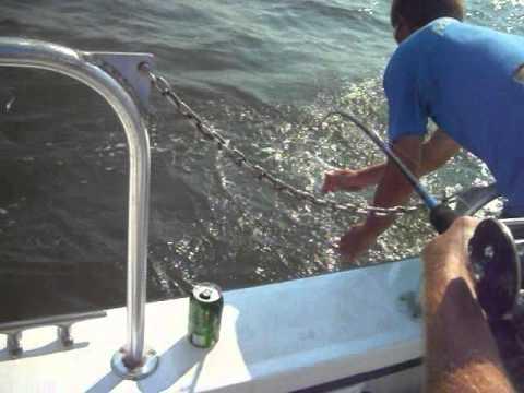 Shark Fishing Myrtle Beach SC