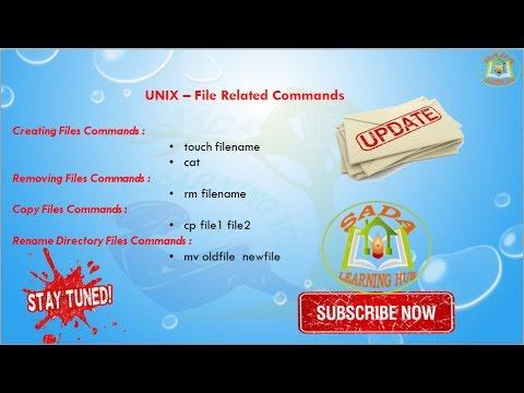 Lesson - 05 : UNIX - File Related Commands in Unix
