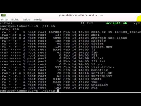 How to execute a file in Unix