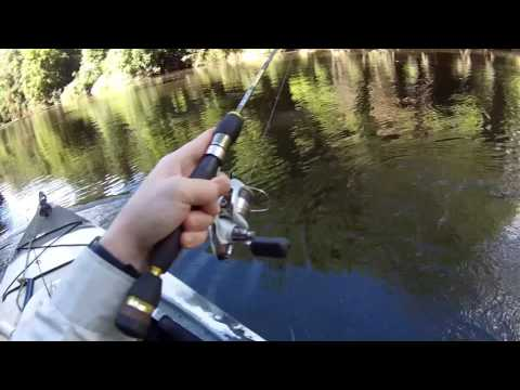 One epic day. Kayak Fishing for Australian Bass with lures. Surface action!