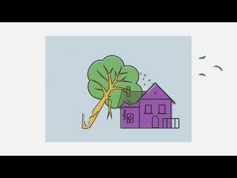 If A Tree Falls on Your House, Does Homeowners Insurance Cover It? | Allstate Insurance