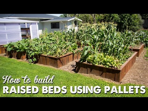 How to Build Raised Beds Using Pallets   A Thousand Words