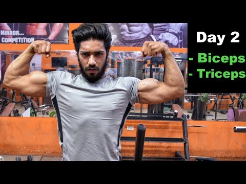 Biceps & Triceps Workout - Day 2 | Fat Loss & Muscle Building Program | Bodybuilding