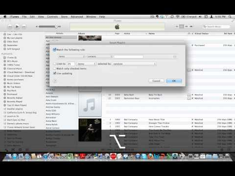 iCloud - iTunes and iTunes Match