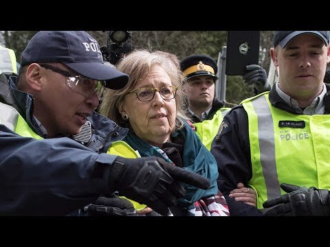Elizabeth May pleads guilty for Trans Mountain protest