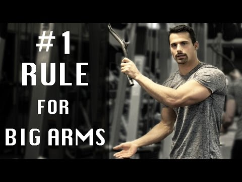The #1 Rule for Build Big Aesthetic Arms (plus my favorite bicep, tricep & deltoid exercises)