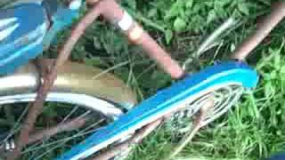 cbb216b2863 1965 Sears Bicycle Videos & Books