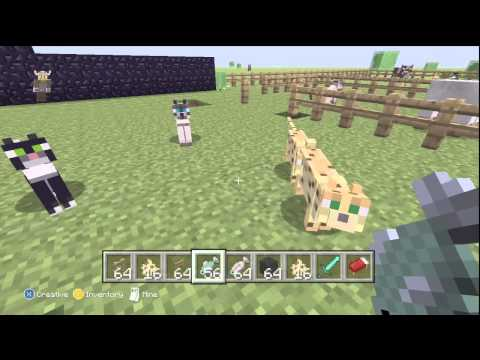 Minecraft Xbox 360 How To TRAIN OCELOTS - Tips + All 3 Cat Skins