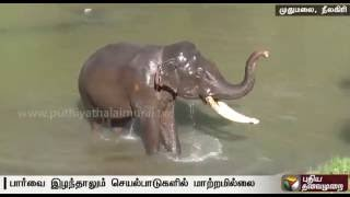 Kumki Tamil Full Movie