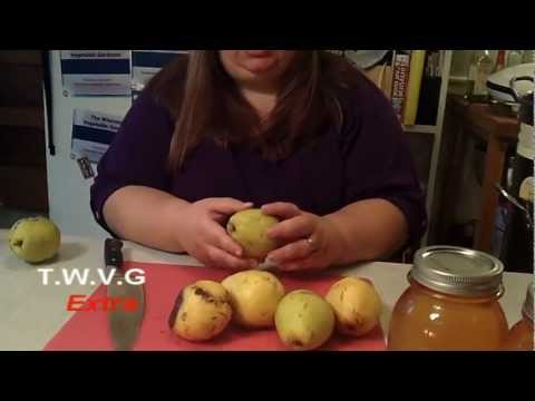 Canning Homemade Pear Juice The Wisconsin Vegetable Gardener Extra 20