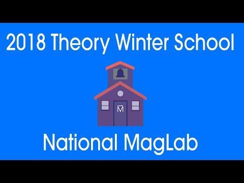 MagLab Theory Winter School 2018: David Huse - Many Body Localization