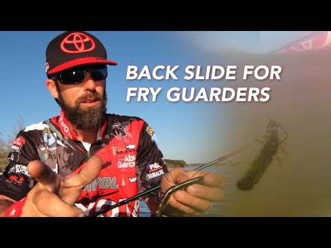 Use the French Fry Rig to Catch Fry Guarding Bass