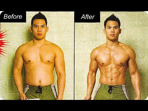 Burn The Fat Feed The Muscle Review – Transform Your Body Forever