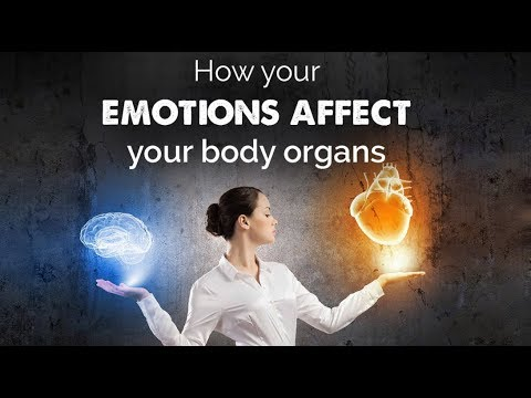 How Your Emotions Affect Your Health and Body Organs -My health